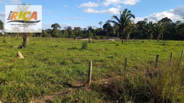 Fazenda com 140 Hectares em Candeias do Jamari/RO à venda, a 14 km da cidade - Foto 7