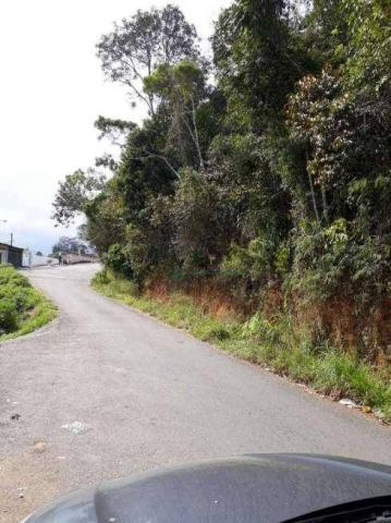 Terreno à venda, 500 m² por R$ 110.000 - Vale do Paraíso - Teresópolis/RJ - Foto 3