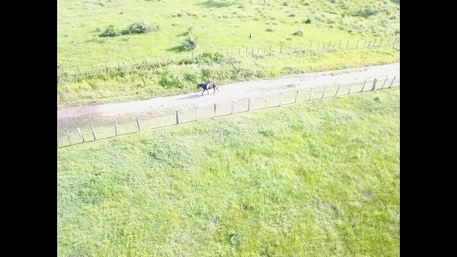 Oportunidade Única - Vendo Fazenda 1000 ha - Foto 5