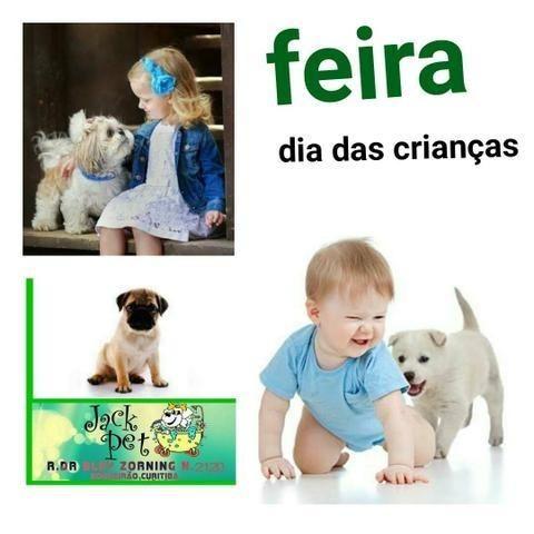 Exposiçao de Filhotes Dia Das Criancas
