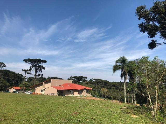 REF. 2194 - Ótima Propriedade Rural a 500 metros do asfalto e a 8 km de Araucária - Foto 16