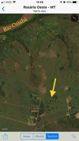 11 hectares formado