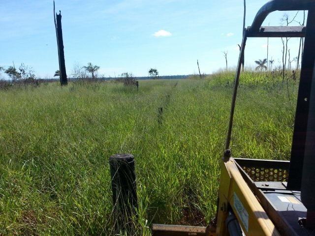 Fazenda região de Juara F0022 - Foto 13