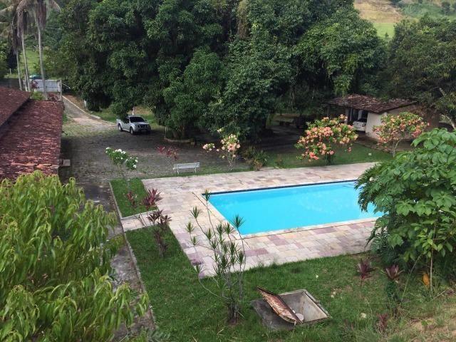 Vendo Chácara em Ribeirão PE - 10 hectares - Foto 8