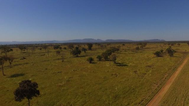 Fazenda 10593 hectares, sendo 7370 formado, terra de cultura - Foto 2