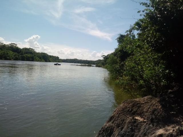 Chácara de 4 hectares em Acorizal, nas margem do rio Cuiabá. - Foto 4