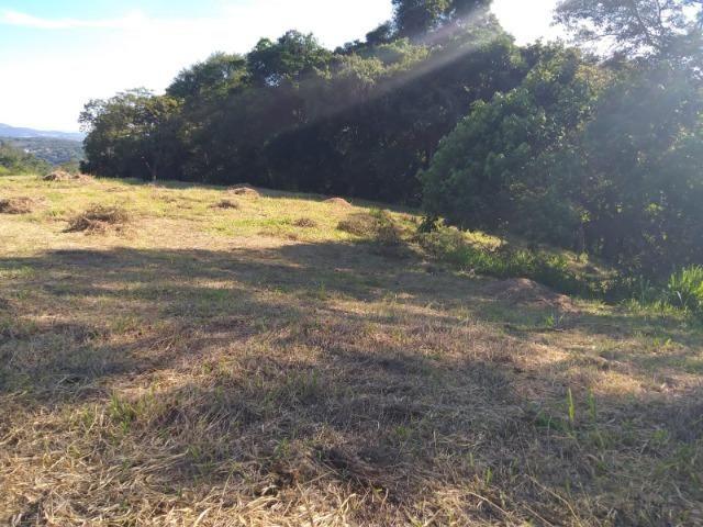 05- Paz em um lote de 1000mt² em área Rural - Foto 13