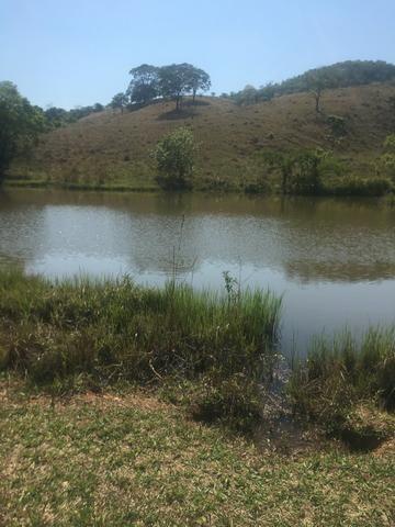 Fazenda caruru Valor R$ 1,400,000 - Foto 16