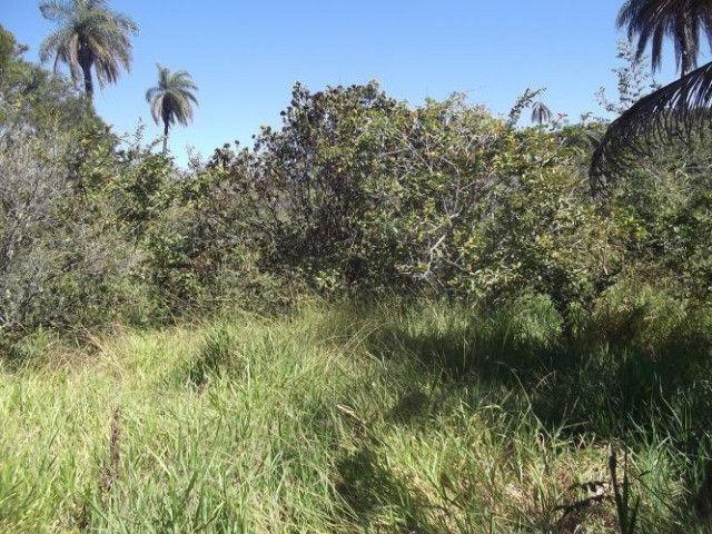 Jaboticatubas. Lindo terreno Rural de 80 mil metros - Foto 5