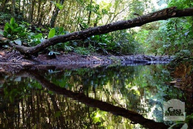 Loteamento/condomínio à venda em Bosque da ribeira, Nova lima cod:246245 - Foto 15