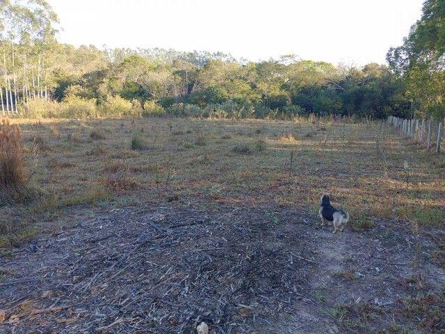 Sítio, Chácara, Terreno a Venda em Porangaba com 24.200 m² em Área Rural - Porangaba - SP - Foto 9