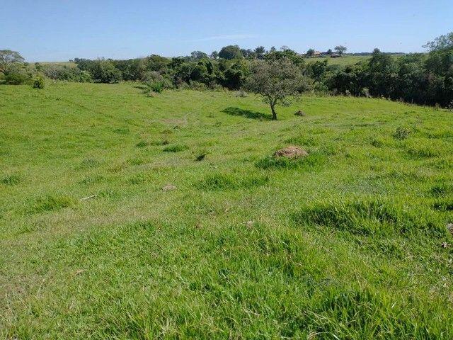 Sítio, Chácara, Terreno a Venda com 77.500 m² 3,2 Alqueres em Bairro Rural - Porangaba - S - Foto 15