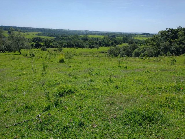 Sítio, Chácara, Terreno a Venda com 77.500 m² 3,2 Alqueres em Bairro Rural - Porangaba - S - Foto 4