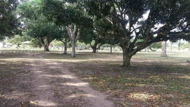 Fazenda para eventos ou temporada em São Gonçalo dos Campos Ba - Foto 16