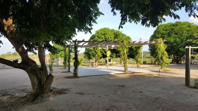 Fazenda de 4250 hectares no Cantá, na Serra da lua, ler descrição do anuncio - Foto 18
