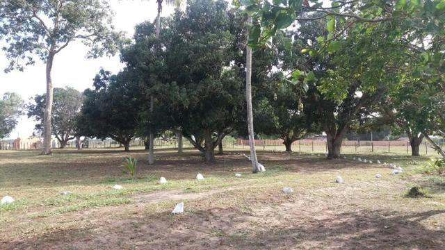 Fazenda para eventos ou temporada em São Gonçalo dos Campos Ba - Foto 12
