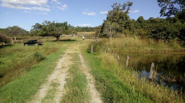 Fazenda no município de faina-GO! 24 Alqueires! - Foto 11