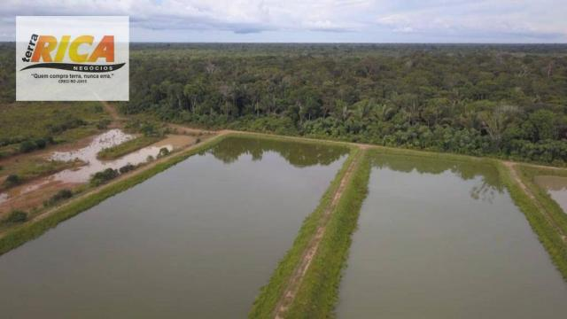 Fazenda á Venda na Àrea rural de Porto Velho-RO  - Foto 13