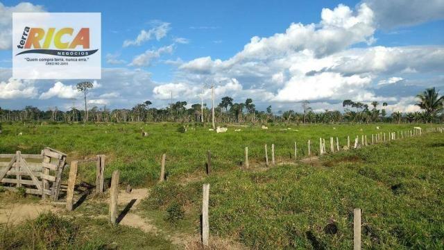 Fazenda com 140 Hectares em Candeias do Jamari/RO à venda, a 14 km da cidade - Foto 5