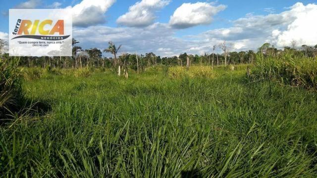 Fazenda com 140 Hectares em Candeias do Jamari/RO à venda, a 14 km da cidade - Foto 16