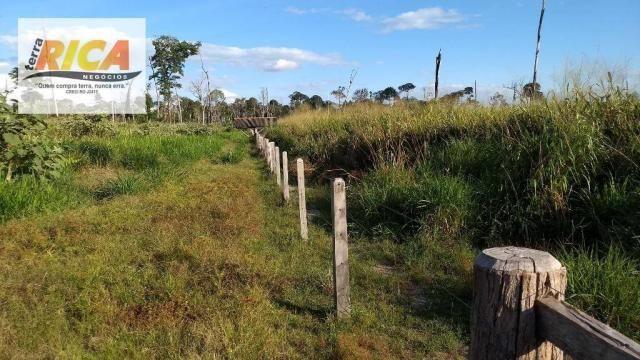 Fazenda com 140 Hectares em Candeias do Jamari/RO à venda, a 14 km da cidade - Foto 19