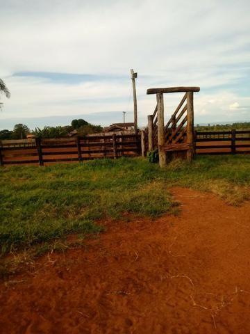 Fazenda 15000 hectares em vila bela, ha 60 km ponte e Lacerda - Foto 9