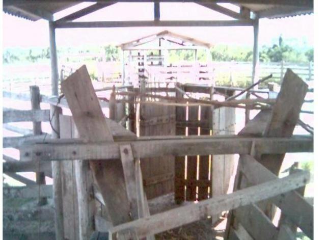Fazenda Excelente Fazenda no Município de Poconé 16520412 hectares - Foto 9