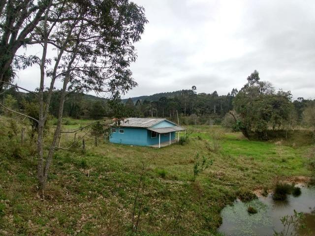 Fazenda em Campo Largo Bairro São Silvestre - Foto 20