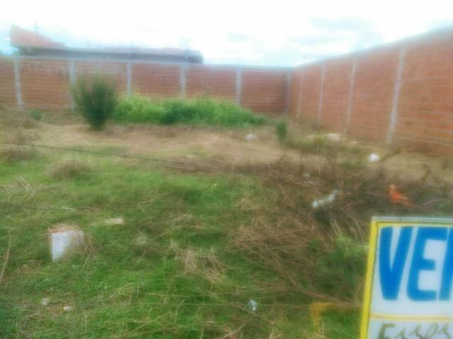 2(dois) terrenos - Foto 2