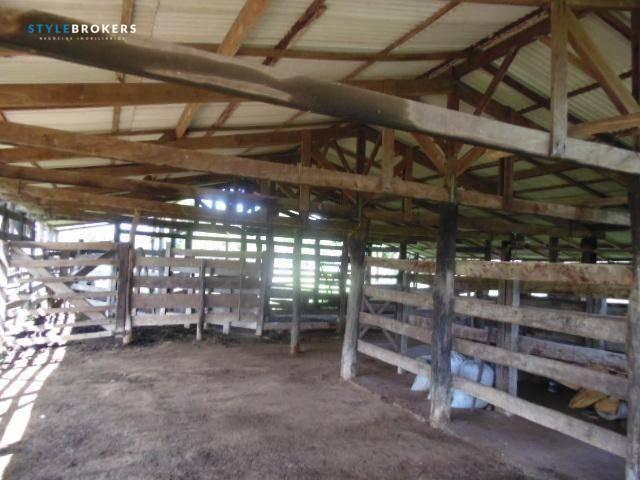 Fazenda à venda, 800000 m² por R$ 550.000,00 - Zona Rural - Nossa Senhora do Livramento/MT - Foto 12