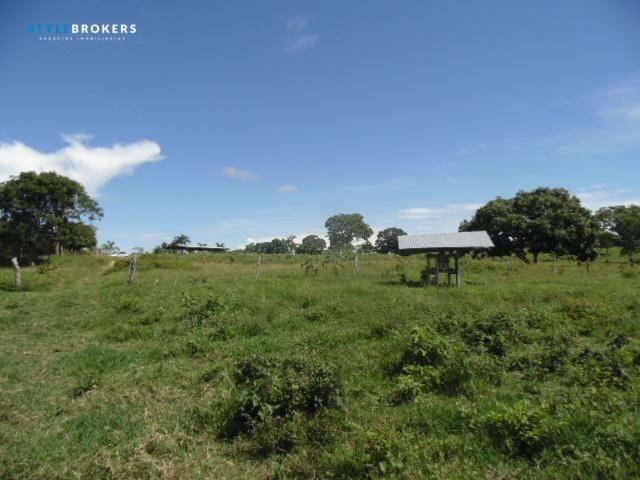 Fazenda à venda, 800000 m² por R$ 550.000,00 - Zona Rural - Nossa Senhora do Livramento/MT - Foto 17