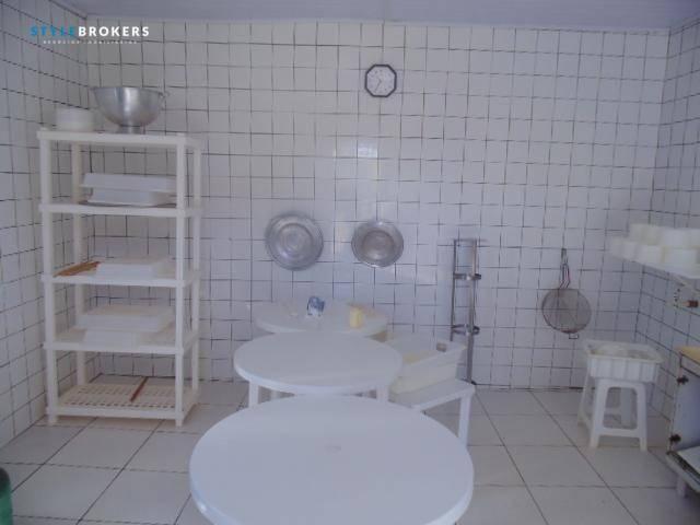 Fazenda à venda, 800000 m² por R$ 550.000,00 - Zona Rural - Nossa Senhora do Livramento/MT - Foto 5