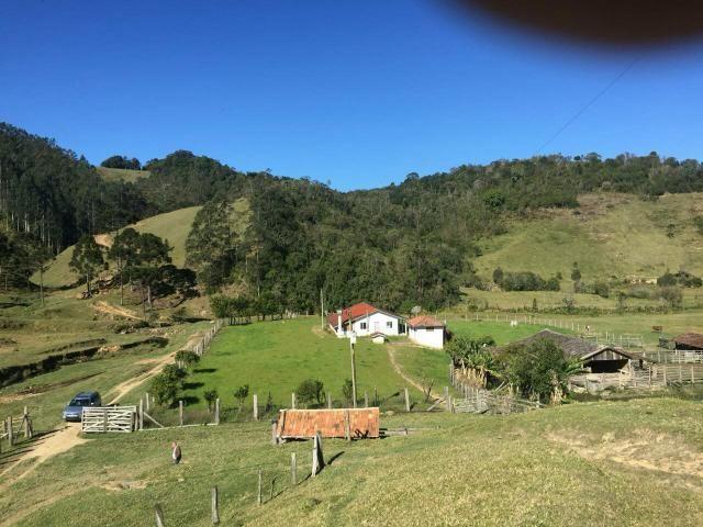 Fazenda anitápolis - Foto 10