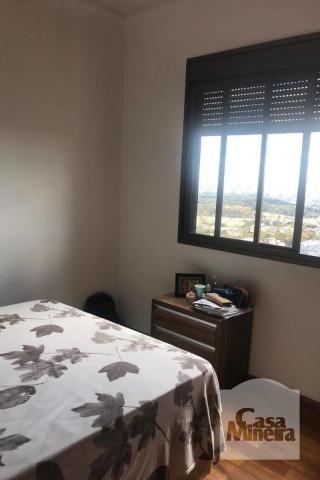 Apartamento à venda com 3 dormitórios em Alto caiçaras, Belo horizonte cod:269921 - Foto 8