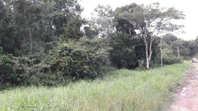 Terreno à venda, 624 m² por R$ 65.000,00 - Praia do Imperador - Itapoá/SC - Foto 4