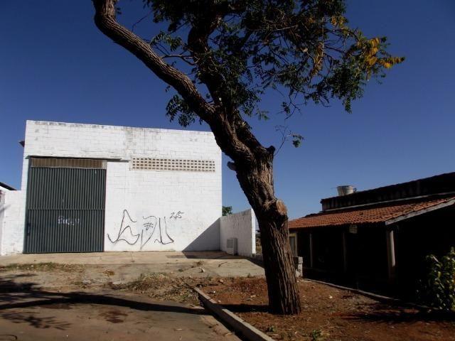 Galpão Venda Aparecida Industrial Br 153 Comercial Goiânia - Foto 4