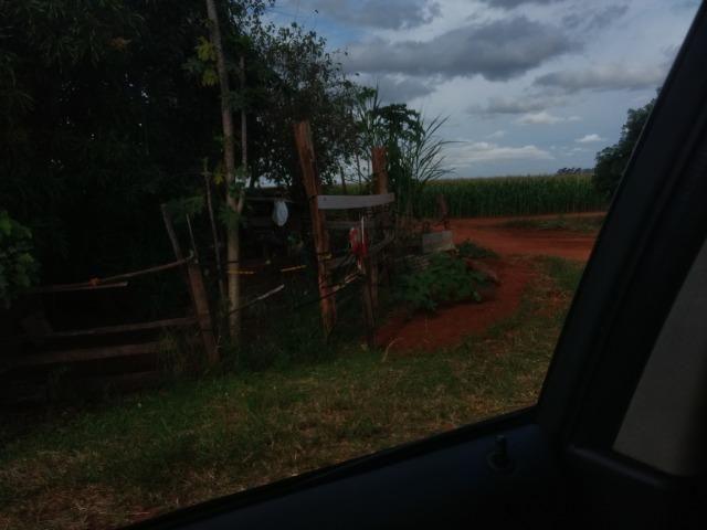 Alugo Fazenda p Arrendamento no Ms 1000 há - Foto 7
