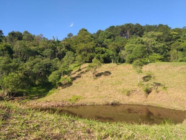 05- Paz em um lote de 1000mt² em área Rural - Foto 12