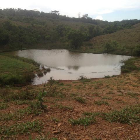 Fazenda caruru Valor R$ 1,400,000 - Foto 15
