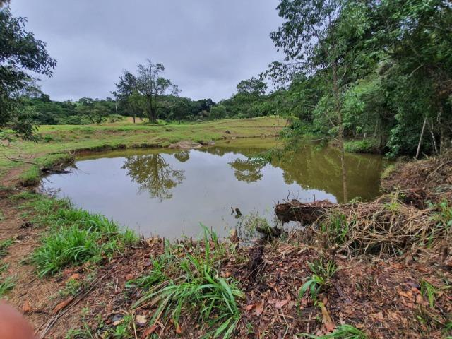 05- Paz em um lote de 1000mt² em área Rural - Foto 16