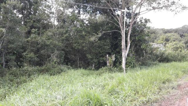 Terreno à venda, 624 m² por R$ 65.000,00 - Praia do Imperador - Itapoá/SC - Foto 8