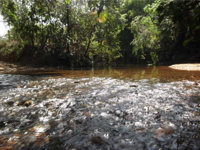Jaboticatubas. sitio de 1.500 m² com água, luz, (Guilherme) - Foto 6