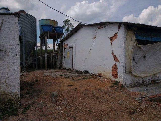 Sítio, Chácara a Venda com 12.100 m², 2 granjas com 13 mil aves cada em Porangaba - SP - Foto 18