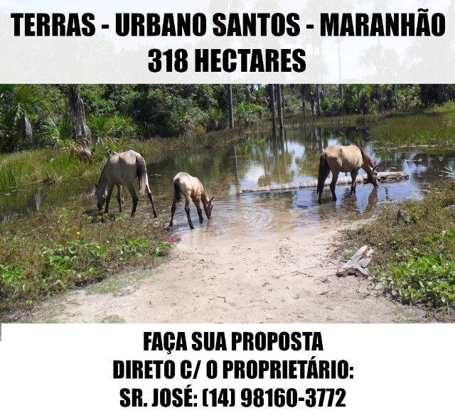 Terras / Fazenda - Urbano Santos (MA) - 318 Ha - Faça Sua Proposta - Foto 9
