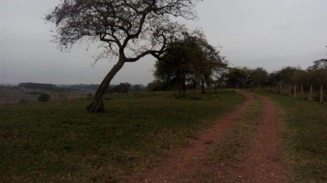Sitio Chácara Fazenda a Venda em Porangaba Com 80.000m², Com Lago, Topografia Plana, Poran - Foto 2