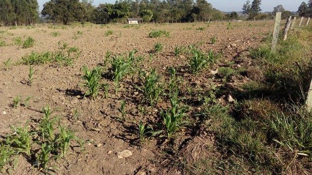 Fazenda, Sítio, Chácara, para Venda em Porangaba com 72.600m² 3 Alqueres, Plano, Limpo, 10 - Foto 14