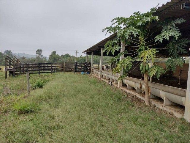 Sítio, Chácara, Fazenda a Venda com 72.600 m², 3 Alqueires, Leiteria, Casa como 2 quartos - Foto 18