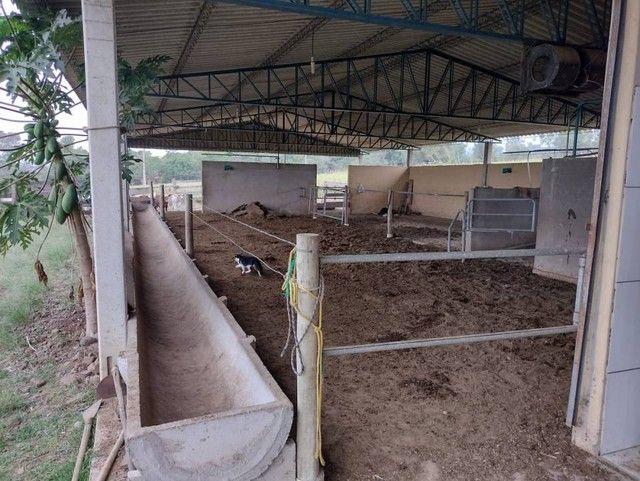 Sítio, Chácara, Fazenda a Venda com 72.600 m², 3 Alqueires, Leiteria, Casa como 2 quartos - Foto 9