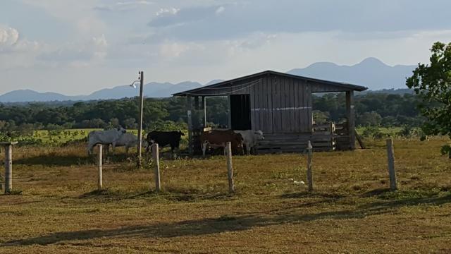 Fazenda de 4250 hectares no Cantá, na Serra da lua, ler descrição do anuncio - Foto 3