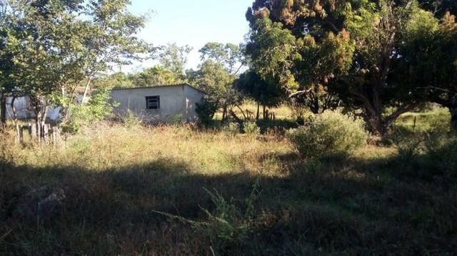 Fazenda no município de faina-GO! 24 Alqueires! - Foto 17
